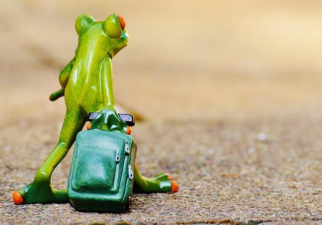 荷物を持つカエルの後ろ姿